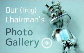 frog chairman